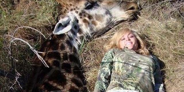 rebbeca francis cazadora y jirafa muerta