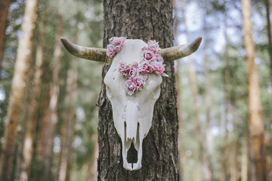 Editorial Spring Wood